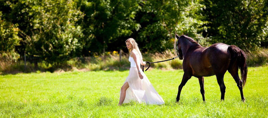 Portrait Photography Milton Keynes, Horse Photography